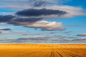Campo agrícola arado y cielo azul con nubes.