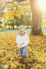 Little boy playing in autumn leaves in Sweden