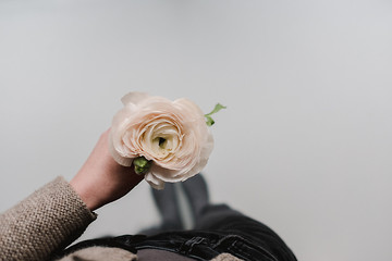 woman holding a single flower in her hand shot from above