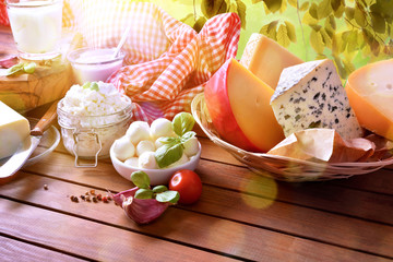 Large assortment of artisanal dairy products in nature elevated view