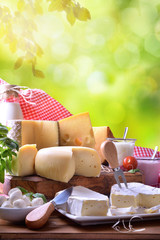 Large assortment of artisanal dairy products in nature vertical composition