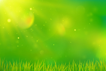 Green spring background with grass.