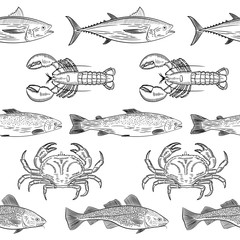 Pattern of painted popular sea fish and crab,lobster. Salmon, tuna, cod, mackerel, dorado,lobster, crab. Sketch of drawing on white background, vector illustration