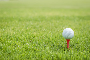 Golf ball on red tee start on green grass course lawn field park nature background with empty copy space