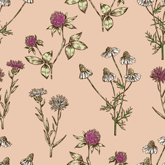 Seamless background of the meadow flowers