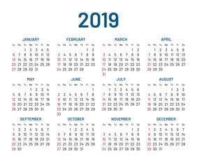 Simple wall calendar 2019 year, flat, isolated. Plain annual chart in minimalistic design. Calendar vector template
