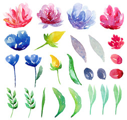 Watercolor abstract flowers clipart. Floral clip art set