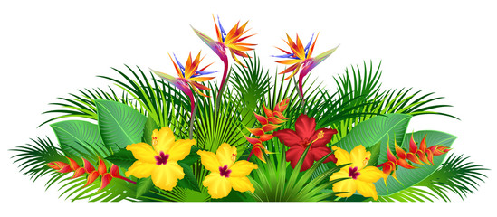 Tropical flowers with palm leaves (strelitzia, hibiscus, heliconia). Hand drawn vector illustration on white background.
