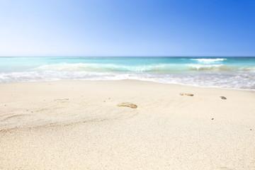 a beautiful beach on a beautiful sunny day