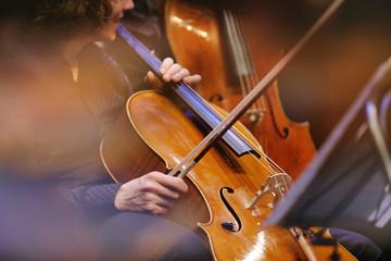 violoncelle instrument musique classique archet lutherie luthier