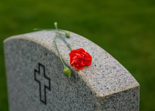 Red Rose on a veterans tombstone