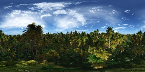 HDRI, high resolution map, environment map, Round panorama, spherical panorama, equidistant projection, tropical forest