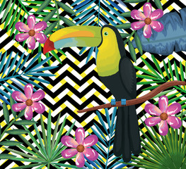 tropical garden with toucan over abstract background vector illustration design leaves and flowers, summer and geometric pattern