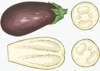 Aubergine or Eggplant Whole and in Cross Section