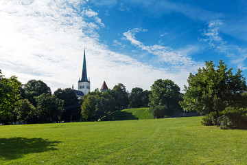 Panorama of Toompea green hills