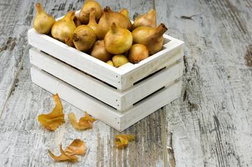Onion box