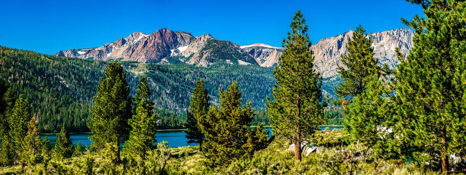 Panorama of eastern Sierra Nevada mountains with peaks of June Lake through pine trees