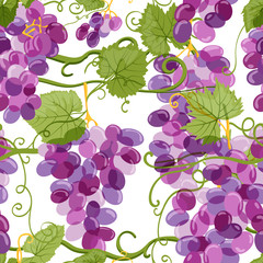 Vector grapes vine seamless pattern. Vineyard hand drawn illustration on white background. Fresh hand drawn grape with green leaves. Design elements for wine label or packaging.