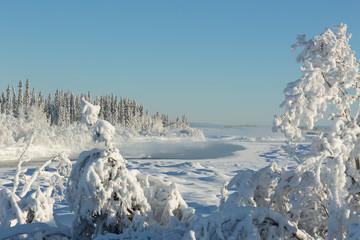 Alaskan Winter Landscape