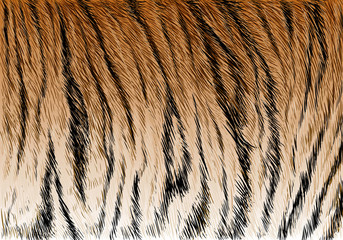 Tiger fur stripe pattern background texture vector illustration.