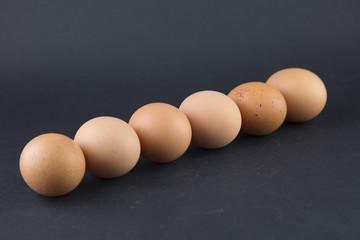 whole eggs of organic farming