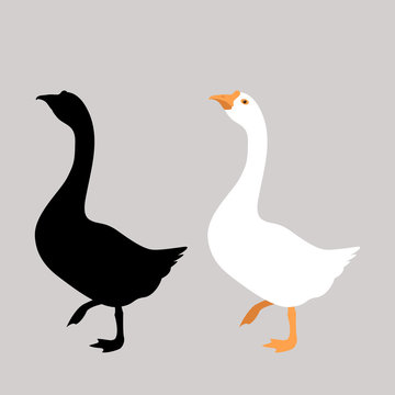 goose  vector illustration flat style front side black