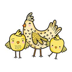 hen with chicks farm bird animals