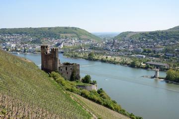 Ruine Ehrenfels mit Rhein und Bingen