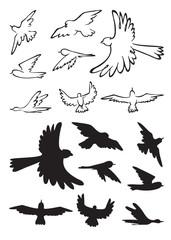 birds in flight silhouette