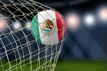 Mexican soccerball in net