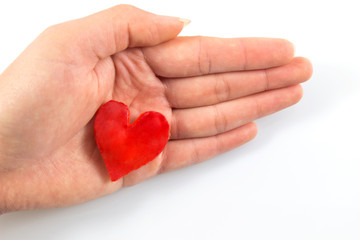 Red heart put on women the hand in concept valentine's day on white background with clipping path.