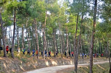 nvironmental trekking near the village of Tsaritsani in Elassona, Greece