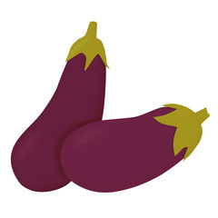 Aubergine vector illustration