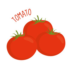 Tomato vector illustration isolated