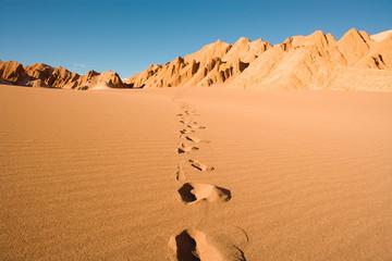 Footprints at Valle de la Muerte (spanish for Death Valley) also known as La Cordillera de la Sal (spanish for salt mountain range), San Pedro de Atacama, Atacama Desert, Chile, South America