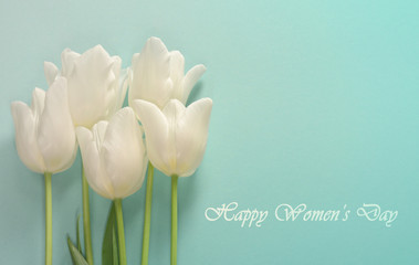 Womens day card. White tulips on a light turquoise background