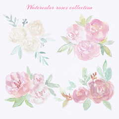 Watercolor roses set. Hand draw watercolor roses, gentle colors, feminine design