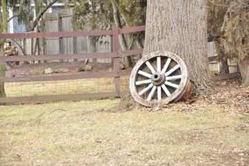 Cogwheel near tree