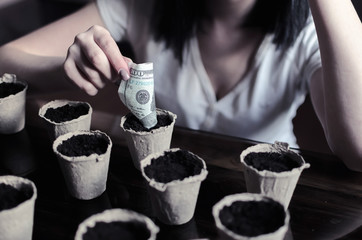 Young beautiful woman plant money in recycling pots