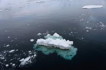 Ice in Antarctic sea