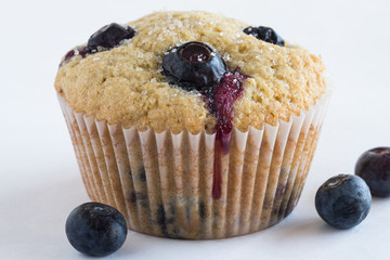 A single blueberry muffin