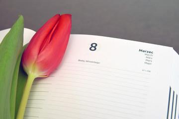 Międzynarodowy Dzień Kobiet, kalendarz z piękny tulipanem