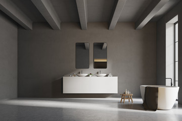 Interior of a gray bathroom with concrete floor