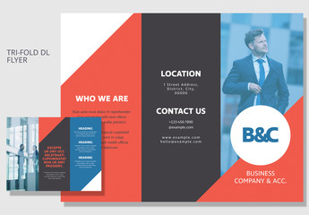 DL Size Tri-Fold Business Brochure Layout 2