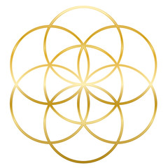 Golden Seed of Life. Precursor of Flower of Life symbol. Unique geometrical figure, composed of seven overlapping circles of same size, forming the symmetrical structure of a hexagon.
