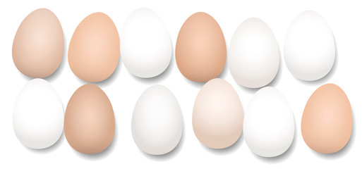 A dozen eggs. Twelve pieces with different white and brown tones, lying side by side, loosely arranged - isolated vector illustration on white background.