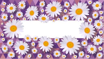 daisy background purple