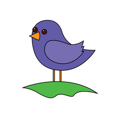 cute bird standing in the field cartoon vector illustration