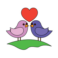 cute couple birds togehther with heart in the field vector illustration