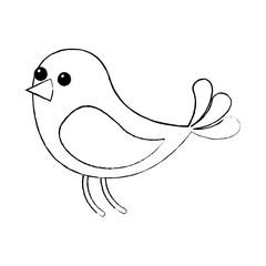 cute bird animal wildlife image vector illustration